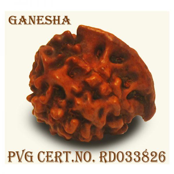 GANESHA 1710-R612