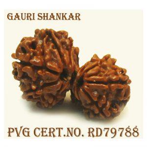 GAURI SHANKAR-3846-J727
