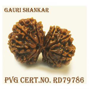 GAURI SHANKAR-4550-S693