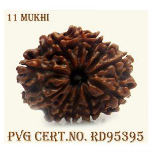 11mukhi-3830-O523