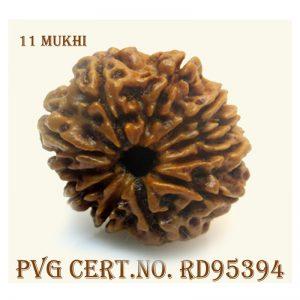 11mukhi-3946-D869