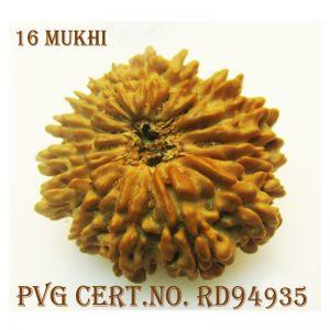 16MUKHI-3136-N282