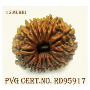 15mukhi-2854-B355