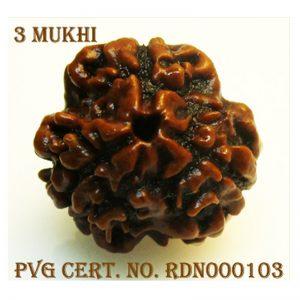 3Mukhi-1766-E929